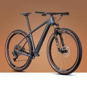 2021 Radon Jealous 10.0 EA Hardtail 29 Гірський велосипед